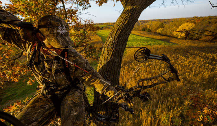 4 Important Keys to Deer Success This Fall
